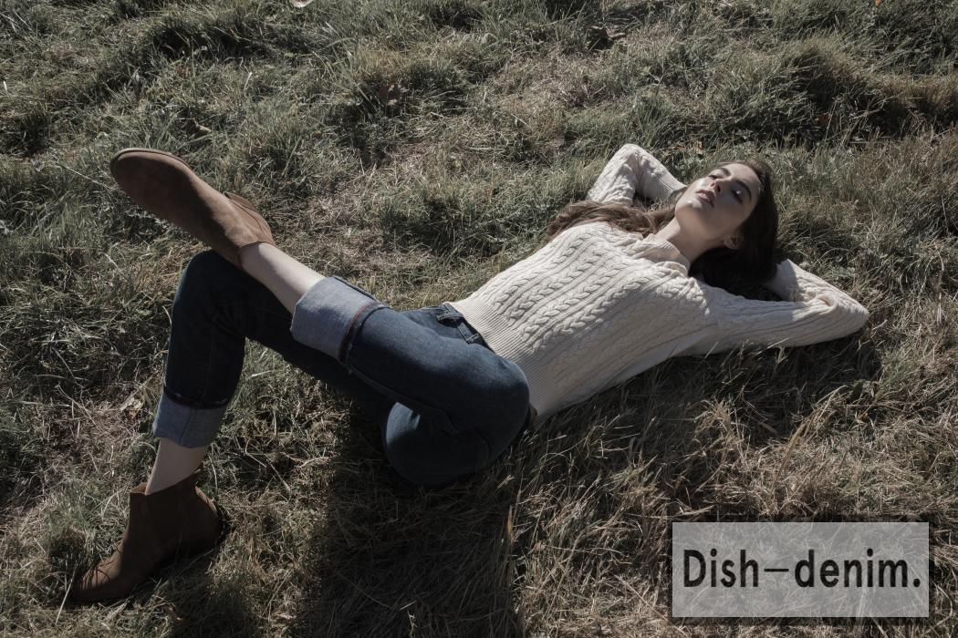 dish-1050x700